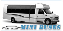 Tucson Mini Bus rental